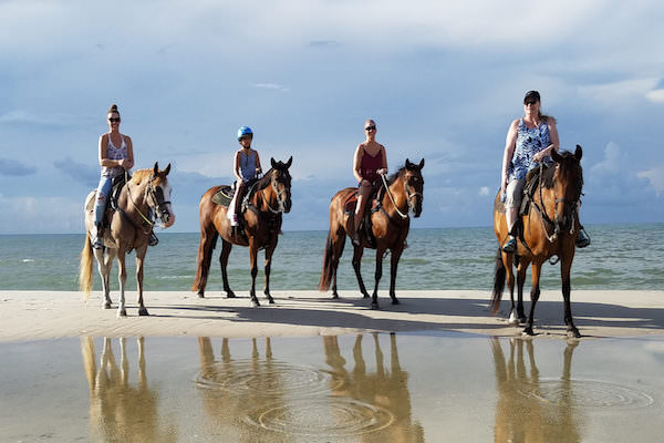 Vallarta Shores-Puerto Vallarta-Activities-Horseback Riding