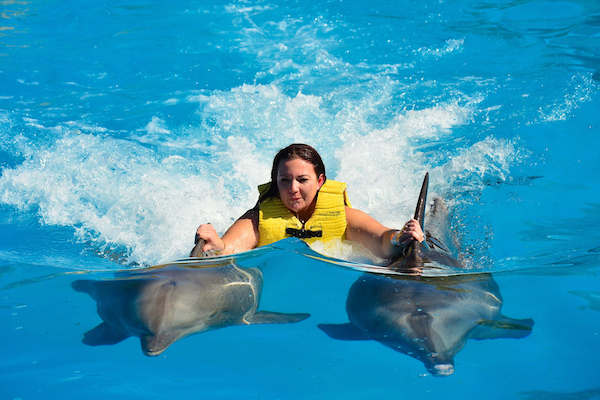 Vallarta Shores-Puerto Vallarta-Activities-Swimming With Dolphins